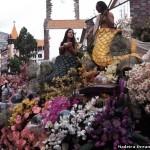 Праздник цветов в Доминикане