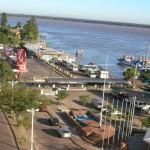 В Аргентине маршрут чая мате станет обширнее