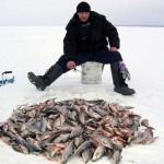 Где рыба клюет?