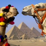 Древний египет обои.