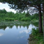 Рыбалка и отдых на природе.