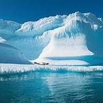Закрыт сезон полётов на Северный полюс
