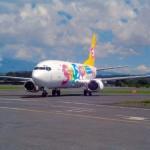 Авиакомпании теперь смогут не возвращать деньги за несостоявшийся перелет