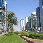 ОАЭ, финиковая пальма