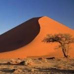Как получить максимальные впечатления от Африки?